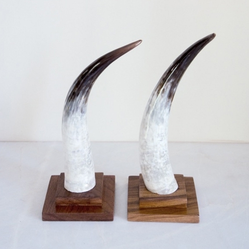 Cow Horn Object, Rose & Fitzgerald