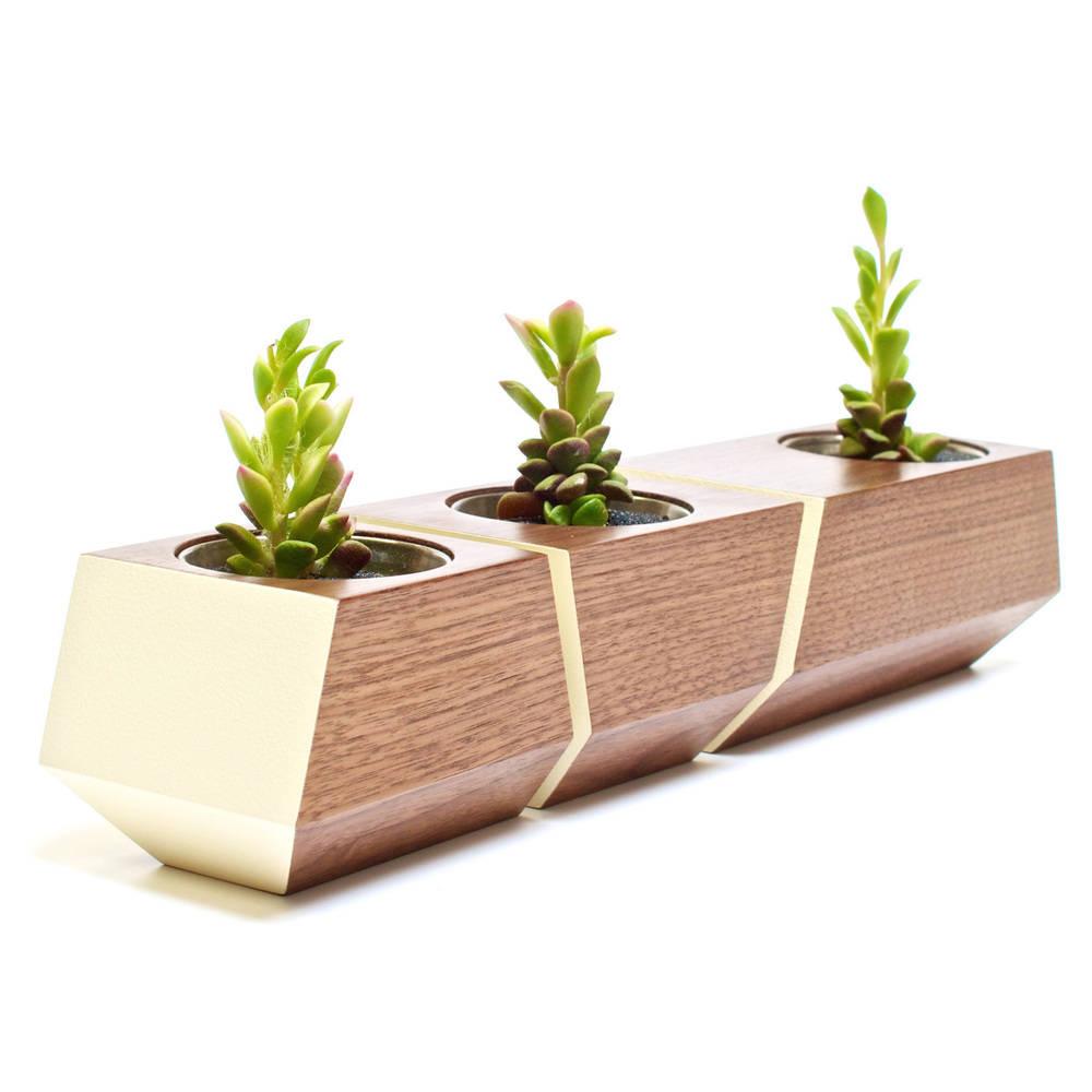 Boxcar Set Walnut & White - Revolution Design House