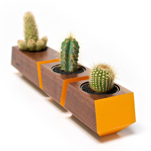Boxcar Set Walnut & Orange