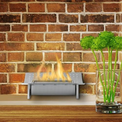 Insert Fireplace by Eco-Feu