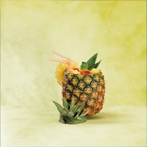PROFESSIONAL Pineapple slicer | GEFU