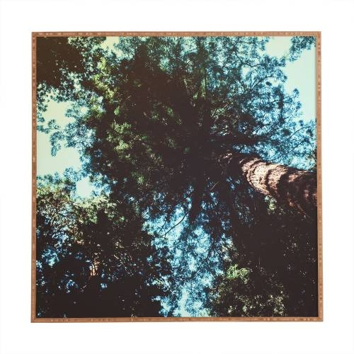 Leah Flores Treetops Framed